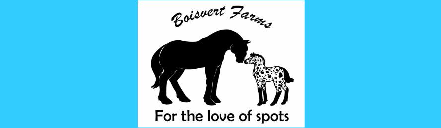 Americn Sugarbush Harlequin Drafts - Boisvert Farms